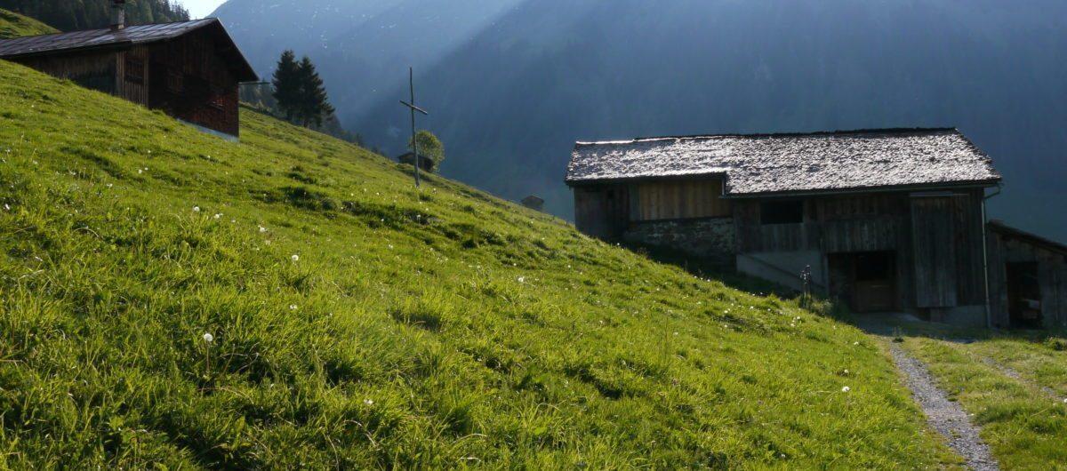 Berbigen im Sommer mit Diedamskopf bregenzerwald hotel krone au